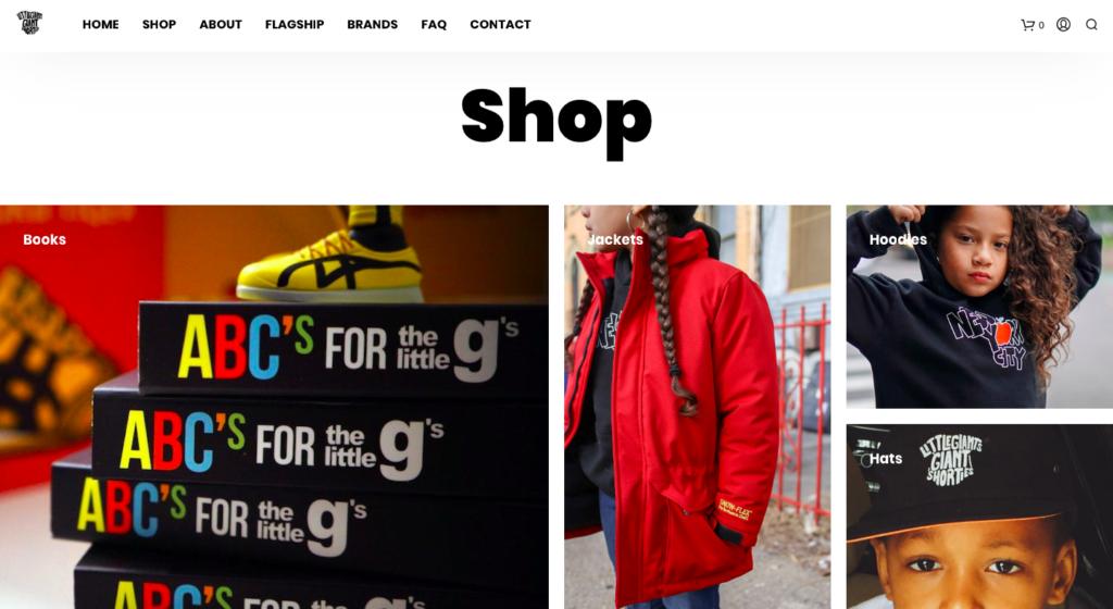 Hoe-maak-je-een-webshop-voorbeeld-woocommerce
