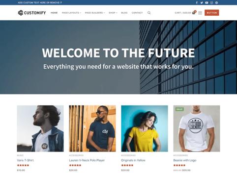 Wordpress-thema's-Customify